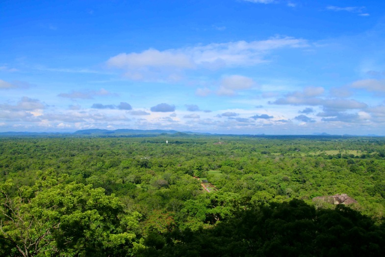 the view from the top of sigiriya